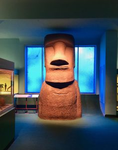 New York 2017 natural history museum