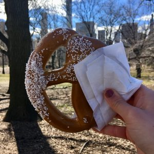 Vegan New York Pretzel